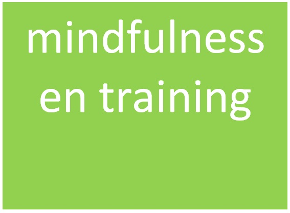 mindfulness en training