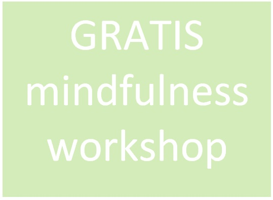 GRATIS mindfulnessworkshop
